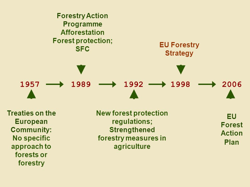 EFI Annual Conference 15 September 2010, Dresden Treaties on the European Community: No specific approach to forests or forestry Forestry Action Programme Afforestation Forest protection; SFC 1992 New forest protection regulations; Strengthened forestry measures in agriculture EU Forestry Strategy EU Forest Action Plan