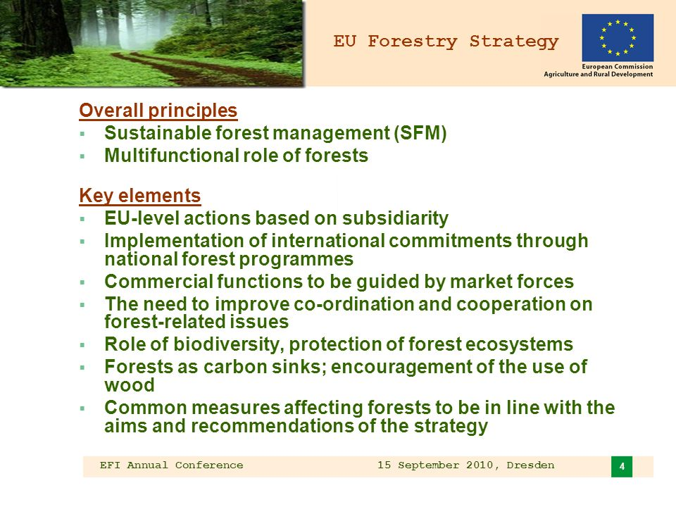 EFI Annual Conference 15 September 2010, Dresden 4 EU Forestry Strategy Overall principles Sustainable forest management (SFM) Multifunctional role of forests Key elements EU-level actions based on subsidiarity Implementation of international commitments through national forest programmes Commercial functions to be guided by market forces The need to improve co-ordination and cooperation on forest-related issues Role of biodiversity, protection of forest ecosystems Forests as carbon sinks; encouragement of the use of wood Common measures affecting forests to be in line with the aims and recommendations of the strategy