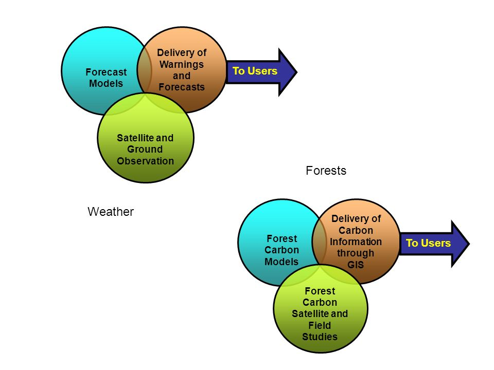 Forest Carbon Models Delivery of Carbon Information through GIS Forest Carbon Satellite and Field Studies To Users Forecast Models Delivery of Warnings and Forecasts Satellite and Ground Observation To Users Weather Forests