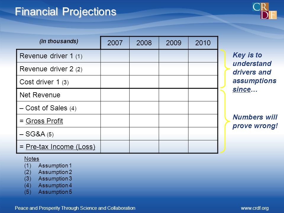Financial Projections (in thousands) 2007200820092010 Revenue driver 1 (1) Revenue driver 2 (2) Cost driver 1 (3) Net Revenue – Cost of Sales (4) = Gross Profit – SG&A (5) = Pre-tax Income (Loss) Notes (1)Assumption 1 (2)Assumption 2 (3)Assumption 3 (4)Assumption 4 (5)Assumption 5 Numbers will prove wrong.