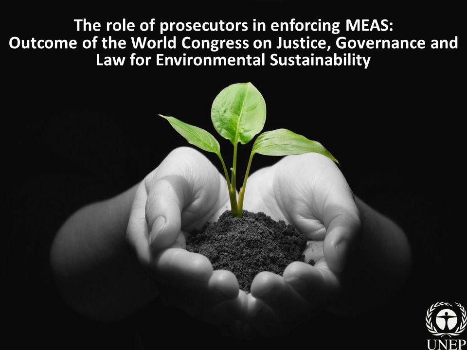 The role of prosecutors in enforcing MEAS: Outcome of the World Congress on Justice, Governance and Law for Environmental Sustainability