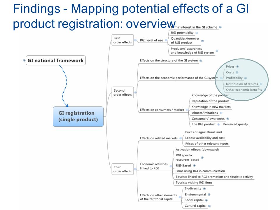 Findings - Mapping potential effects of a GI product registration: overview