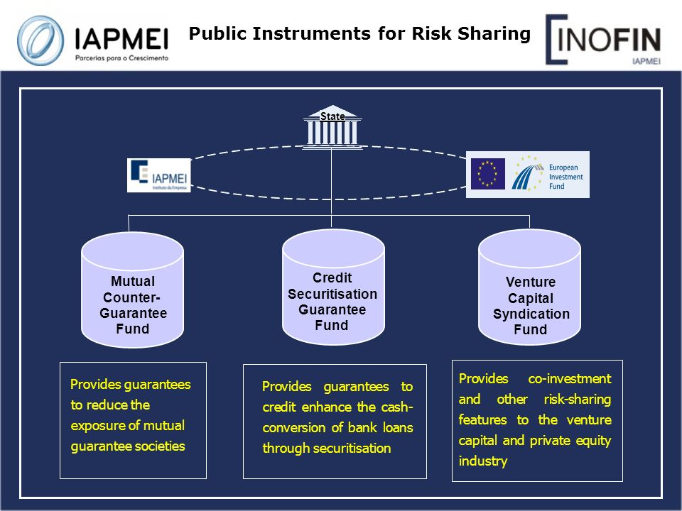 Provides co-investment and other risk-sharing features to the venture capital and private equity industry Provides guarantees to credit enhance the cash- conversion of bank loans through securitisation Provides guarantees to reduce the exposure of mutual guarantee societies Public Instruments for Risk Sharing Mutual Counter- Guarantee Fund Credit Securitisation Guarantee Fund Venture Capital Syndication Fund