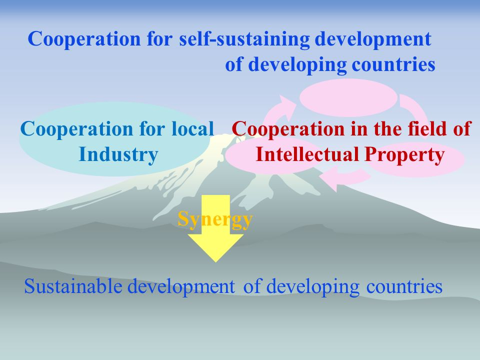 Cooperation in the field of Intellectual Property Cooperation for local Industry Cooperation for self-sustaining development of developing countries Synergy Sustainable development of developing countries