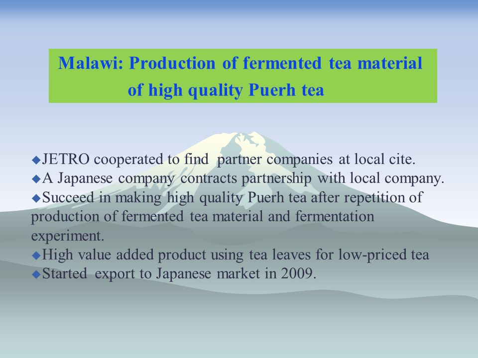 Malawi: Production of fermented tea material of high quality Puerh tea JETRO cooperated to find partner companies at local cite.