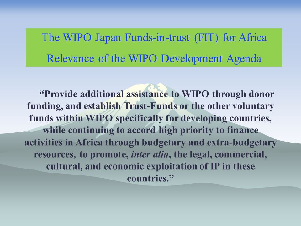 Provide additional assistance to WIPO through donor funding, and establish Trust-Funds or the other voluntary funds within WIPO specifically for developing countries, while continuing to accord high priority to finance activities in Africa through budgetary and extra-budgetary resources, to promote, inter alia, the legal, commercial, cultural, and economic exploitation of IP in these countries.