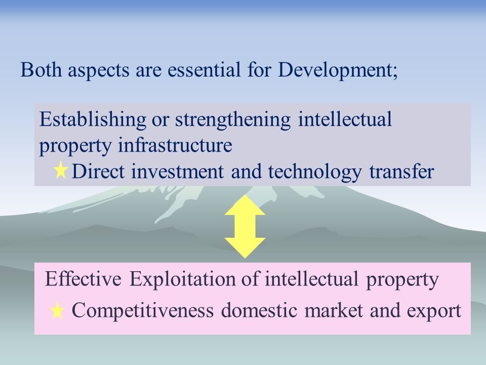 Effective Exploitation of intellectual property Competitiveness domestic market and export Both aspects are essential for Development; Establishing or strengthening intellectual property infrastructure Direct investment and technology transfer