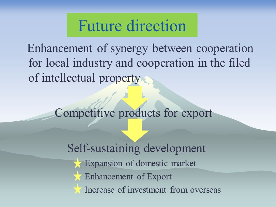 Future direction Enhancement of synergy between cooperation for local industry and cooperation in the filed of intellectual property Competitive products for export Self-sustaining development Expansion of domestic market Enhancement of Export Increase of investment from overseas