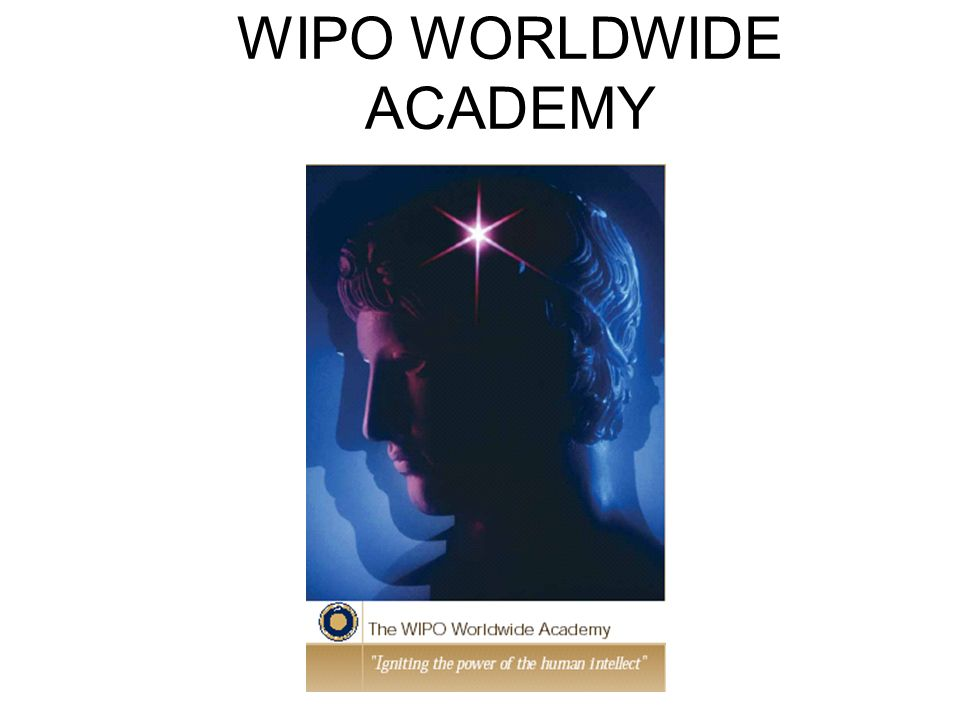WIPO WORLDWIDE ACADEMY
