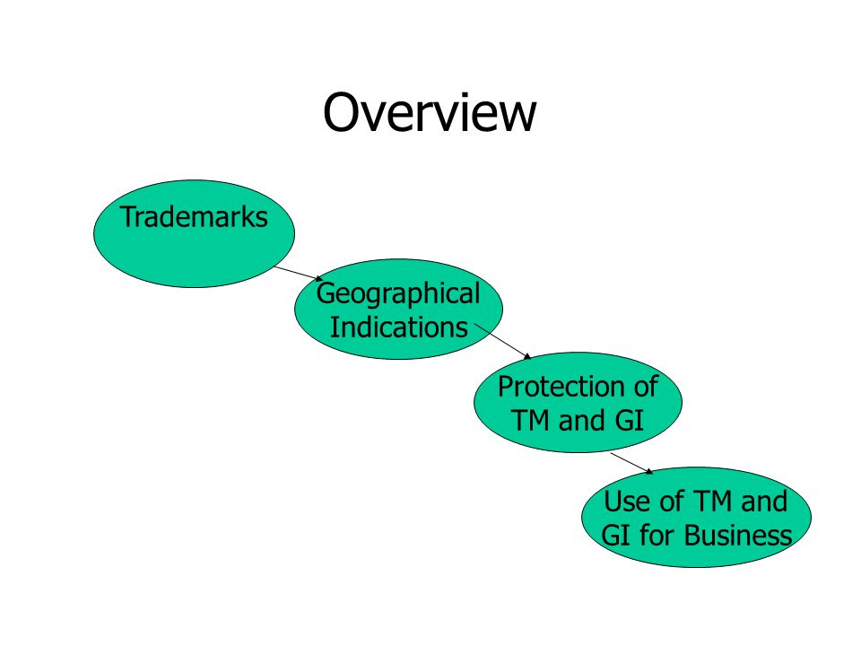 Overview Trademarks Geographical Indications Protection of TM and GI Use of TM and GI for Business