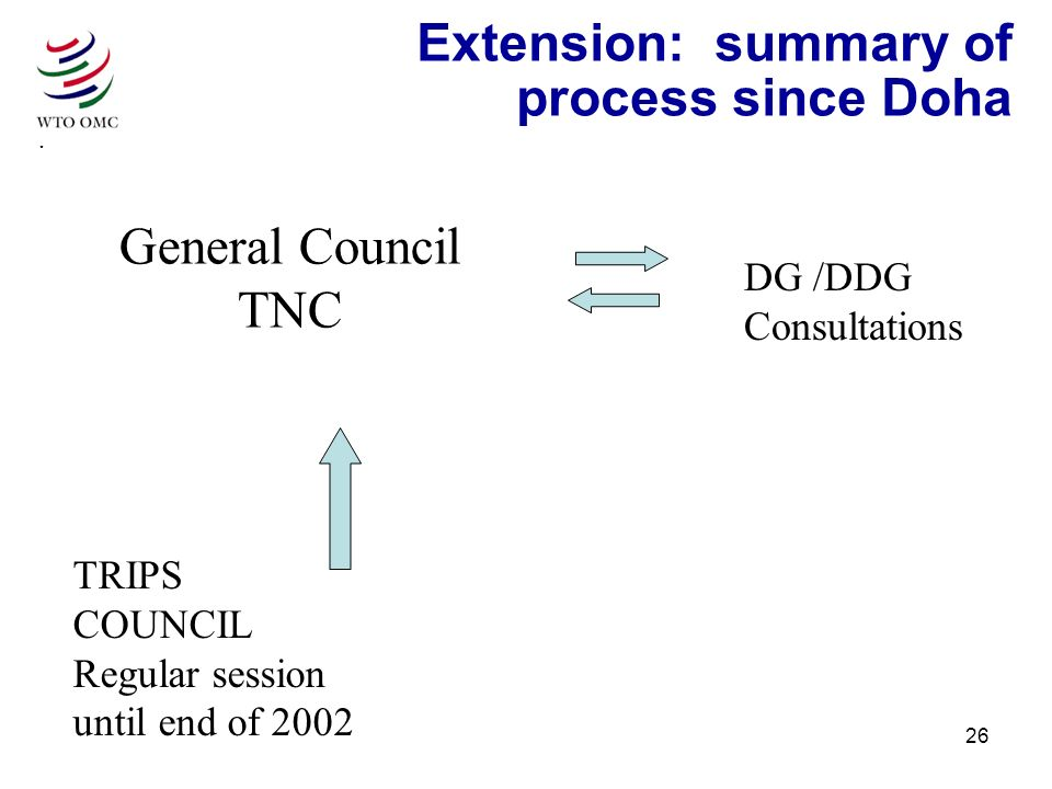 26 Extension: summary of process since Doha TRIPS COUNCIL Regular session until end of 2002 General Council TNC DG /DDG Consultations