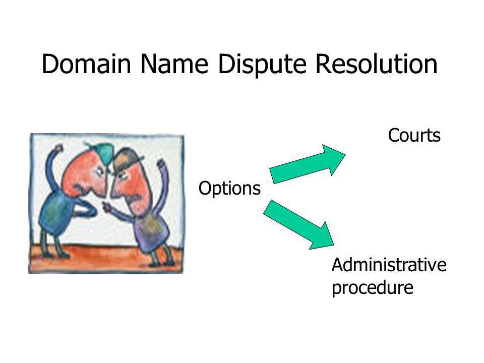 Domain Name Dispute Resolution Options Courts Administrative procedure