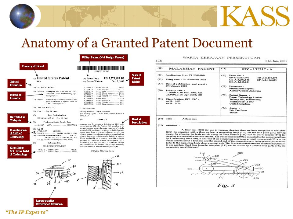 The IP Experts Anatomy of a Granted Patent Document