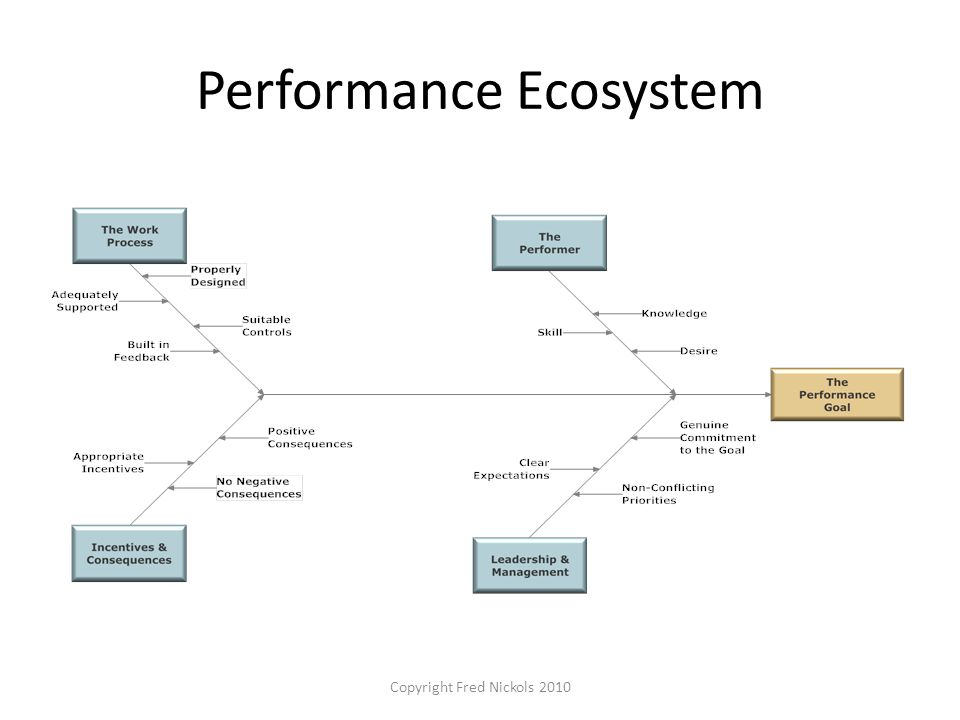 Performance Ecosystem Copyright Fred Nickols 2010