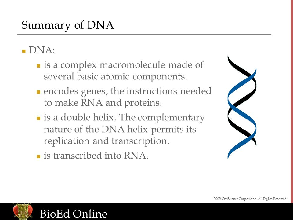 www.BioEdOnline.org BioEd Online Summary of DNA DNA: is a complex macromolecule made of several basic atomic components.