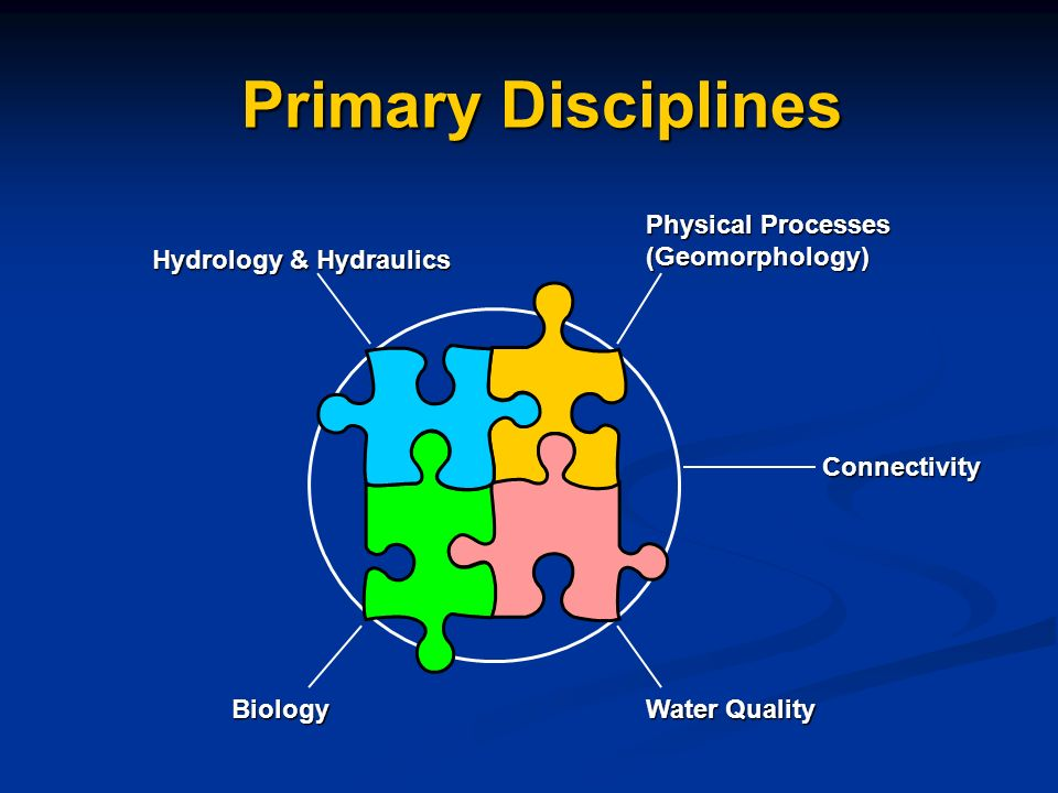Primary Disciplines Hydrology & Hydraulics Physical Processes (Geomorphology) Biology Water Quality Connectivity
