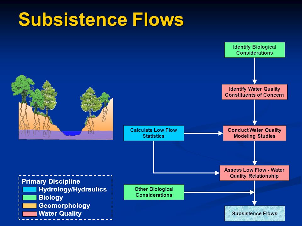 Identify Biological Considerations Calculate Low Flow Statistics Identify Water Quality Constituents of Concern Conduct Water Quality Modeling Studies Assess Low Flow - Water Quality Relationship Subsistence Flows Other Biological Considerations Primary Discipline Hydrology/Hydraulics Biology Geomorphology Water Quality Subsistence Flows