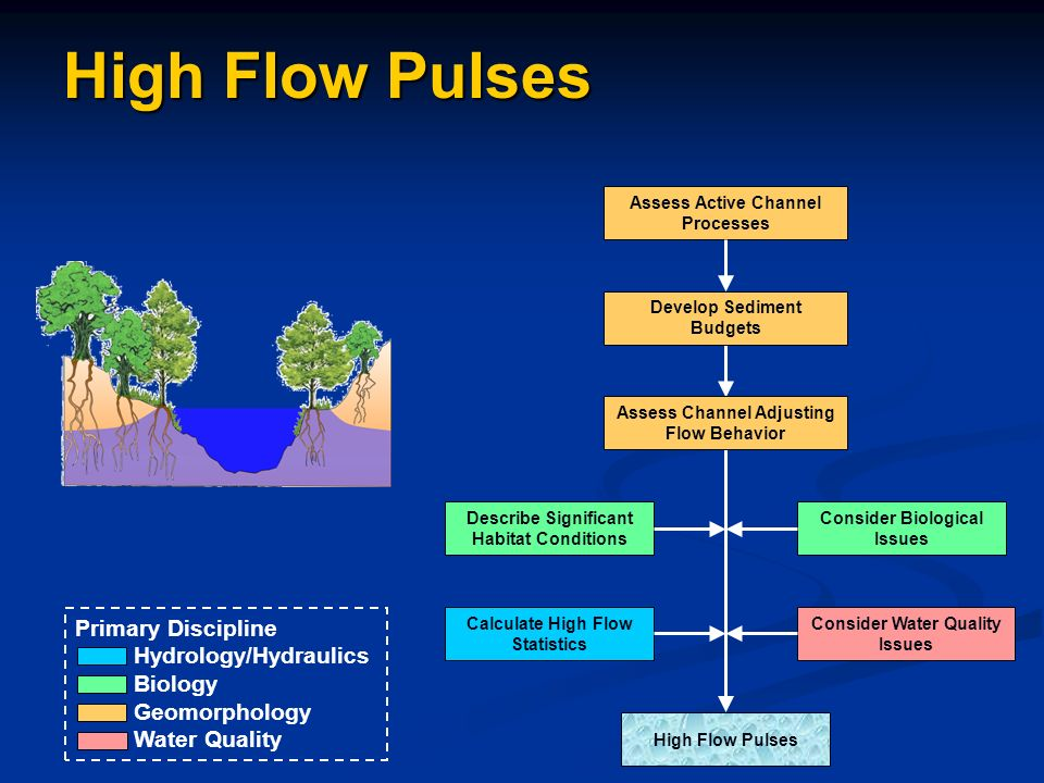 Assess Active Channel Processes Develop Sediment Budgets Assess Channel Adjusting Flow Behavior High Flow Pulses Calculate High Flow Statistics Consider Water Quality Issues Consider Biological Issues Describe Significant Habitat Conditions High Flow Pulses Primary Discipline Hydrology/Hydraulics Biology Geomorphology Water Quality