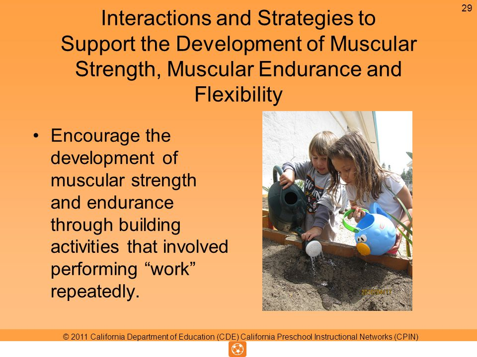 Interactions and Strategies to Support the Development of Muscular Strength, Muscular Endurance and Flexibility Encourage the development of muscular strength and endurance through building activities that involved performing work repeatedly.