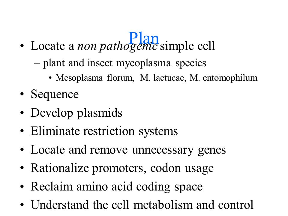 Plan Locate a non pathogenic simple cell –plant and insect mycoplasma species Mesoplasma florum, M.