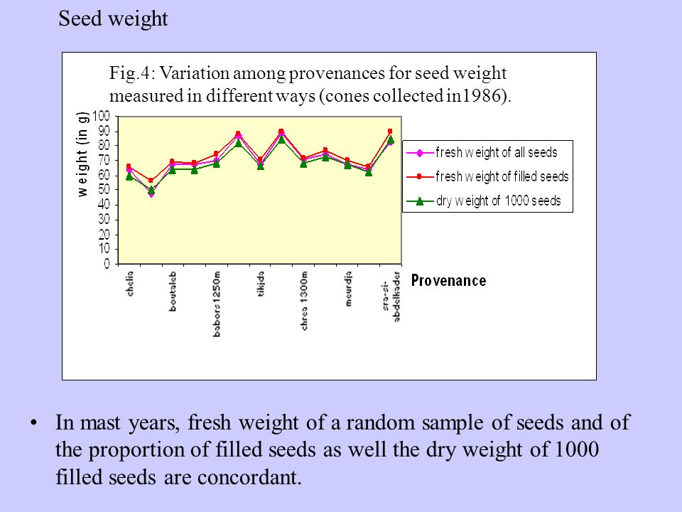 In mast years, fresh weight of a random sample of seeds and of the proportion of filled seeds as well the dry weight of 1000 filled seeds are concordant.