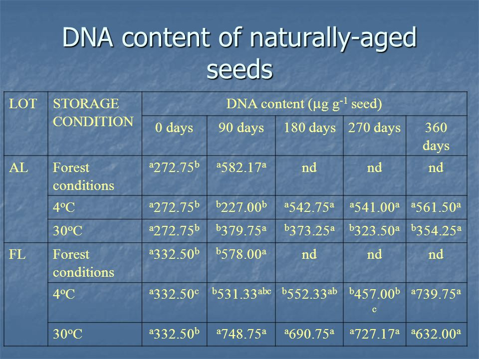 DNA content of naturally-aged seeds LOTSTORAGE CONDITION DNA content ( g g -1 seed) 0 days90 days180 days270 days360 days ALForest conditions a 272.75 ba 582.17 a nd 4oC4oC a 272.75 bb 227.00 ba 542.75 aa 541.00 aa 561.50 a 30 o C a 272.75 bb 379.75 ab 373.25 ab 323.50 ab 354.25 a FLForest conditions a 332.50 bb 578.00 a nd 4oC4oC a 332.50 cb 531.33 abcb 552.33 abb 457.00 b c a 739.75 a 30 o C a 332.50 ba 748.75 aa 690.75 aa 727.17 aa 632.00 a