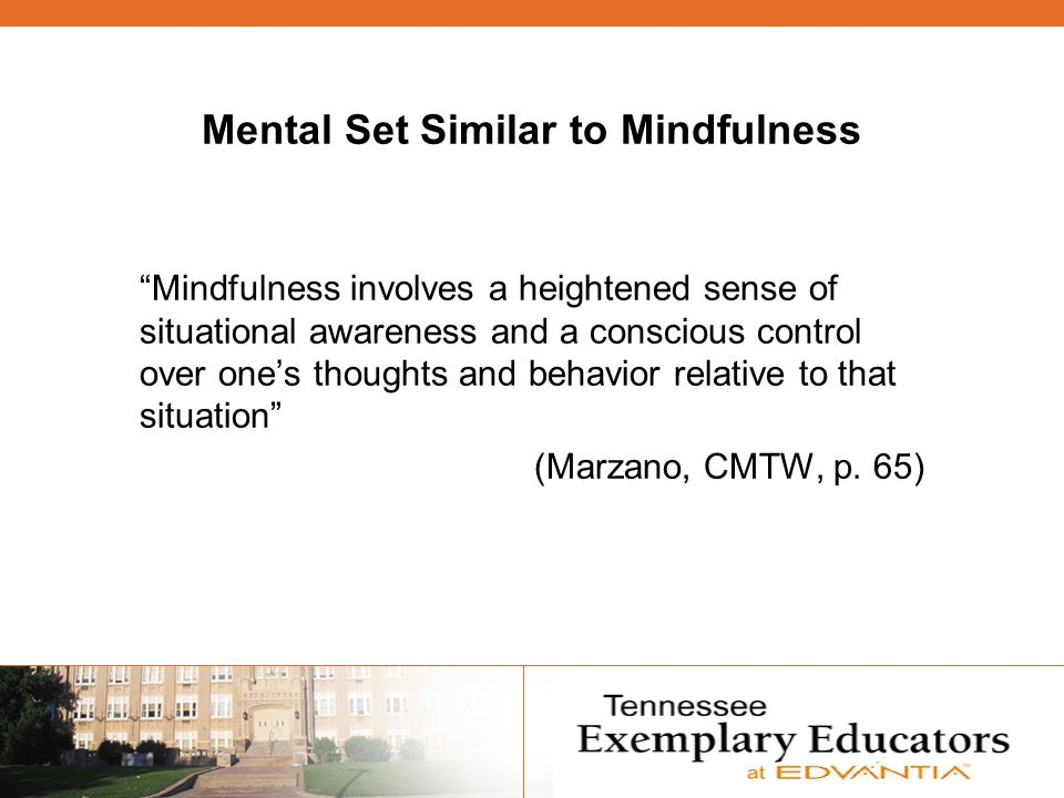 Mental Set Similar to Mindfulness Mindfulness involves a heightened sense of situational awareness and a conscious control over ones thoughts and behavior relative to that situation (Marzano, CMTW, p.