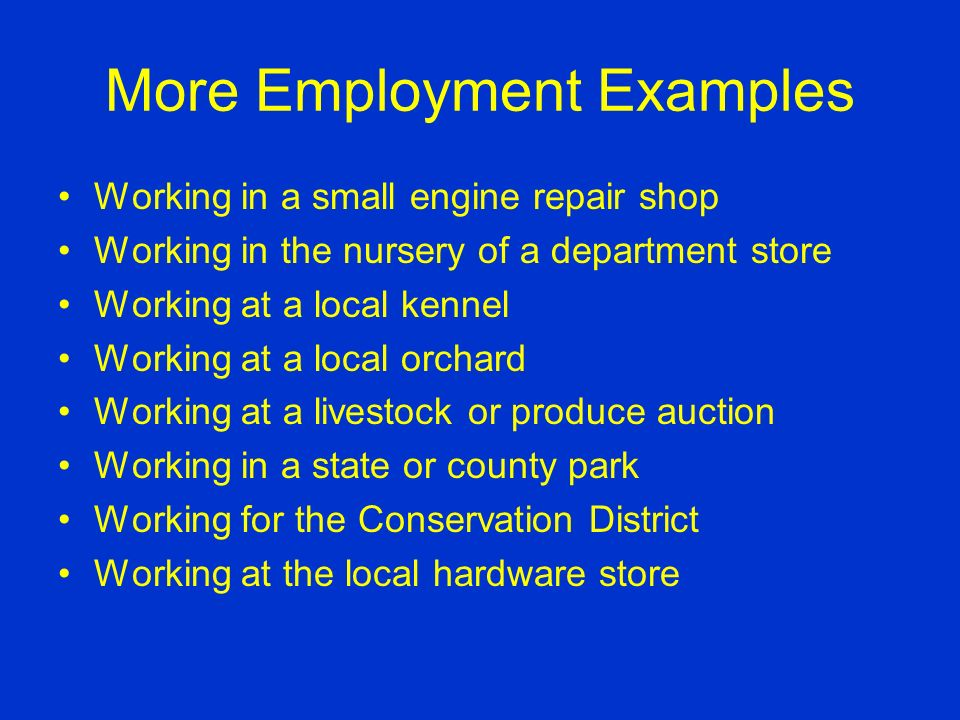 Employment Examples Working in a florist shop Working after school at a farm supply store Working on Saturdays at a riding stable Working in a small animal hospital Placement on a farm Working in the produce or meat department of a grocery store.