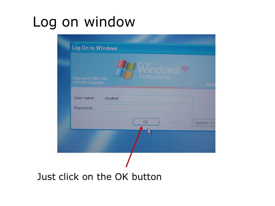 Log on window Just click on the OK button