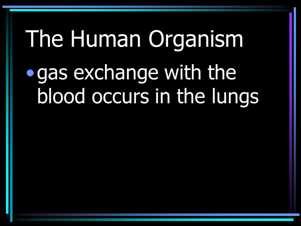The Human Organism gas exchange with the blood occurs in the lungs