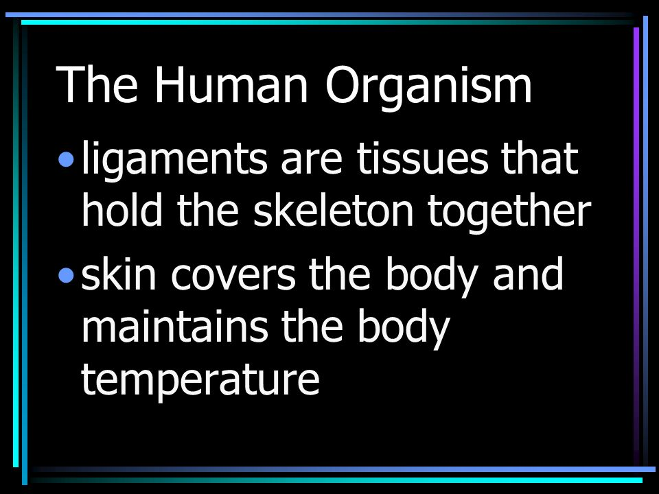 The Human Organism ligaments are tissues that hold the skeleton together skin covers the body and maintains the body temperature