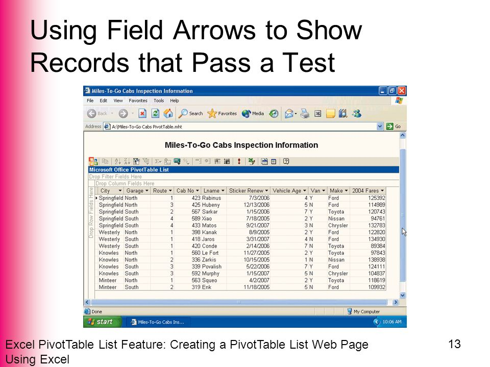 Excel PivotTable List Feature: Creating a PivotTable List Web Page Using Excel 13 Using Field Arrows to Show Records that Pass a Test