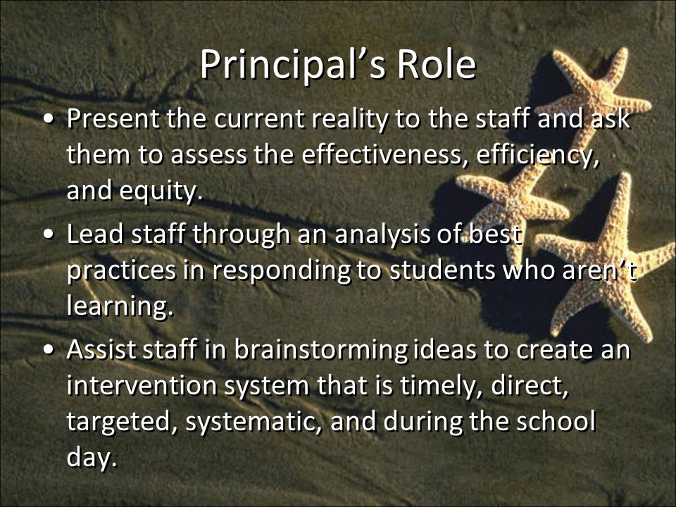 Principals Role Present the current reality to the staff and ask them to assess the effectiveness, efficiency, and equity.
