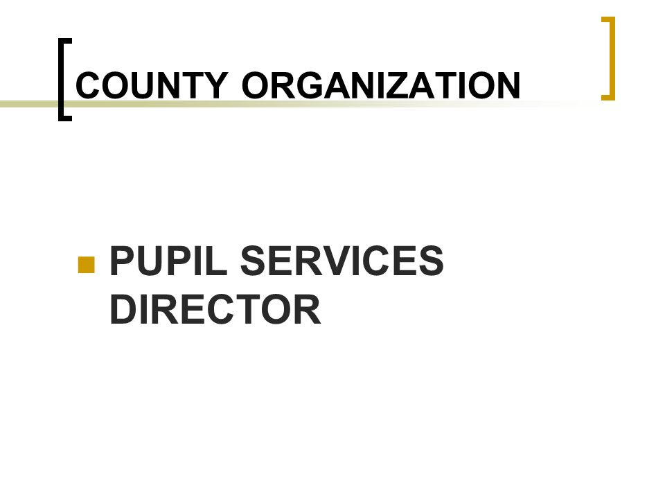 COUNTY ORGANIZATION PUPIL SERVICES DIRECTOR