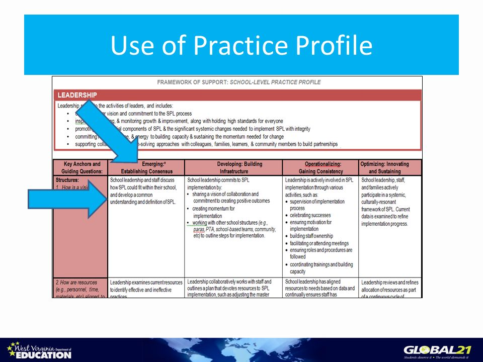 Use of Practice Profile