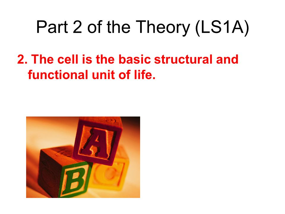 Part 2 of the Theory (LS1A) 2. The cell is the basic structural and functional unit of life.