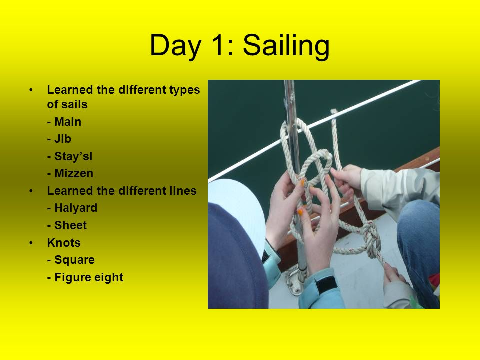 Day 1: Sailing Learned the different types of sails - Main - Jib - Staysl - Mizzen Learned the different lines - Halyard - Sheet Knots - Square - Figure eight