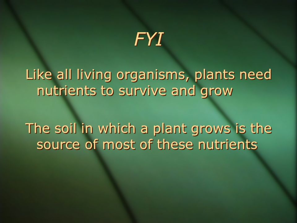 FYI Like all living organisms, plants need nutrients to survive and grow The soil in which a plant grows is the source of most of these nutrients Like all living organisms, plants need nutrients to survive and grow The soil in which a plant grows is the source of most of these nutrients