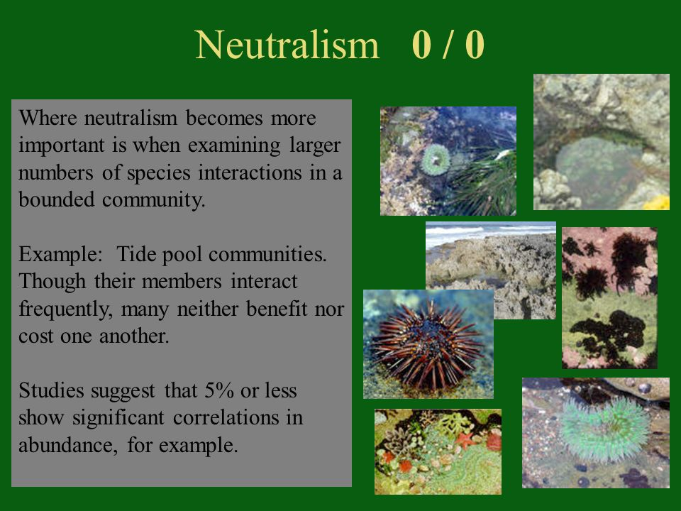 Neutralism 0 / 0 Where neutralism becomes more important is when examining larger numbers of species interactions in a bounded community.