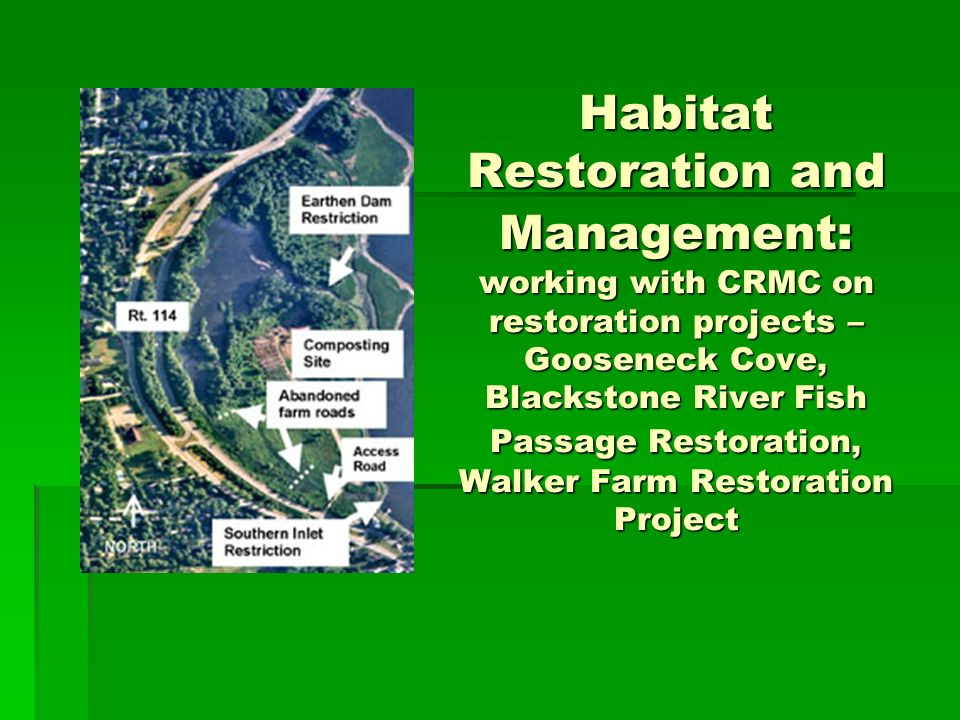 Habitat Restoration and Management: working with CRMC on restoration projects – Gooseneck Cove, Blackstone River Fish Passage Restoration, Walker Farm Restoration Project