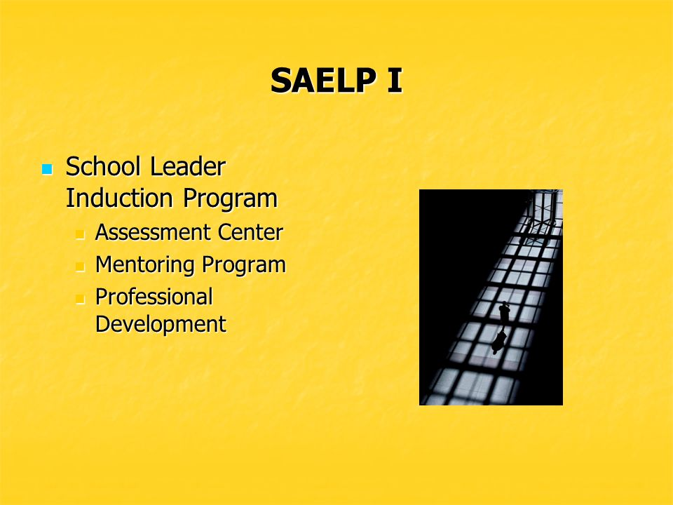 SAELP I Legislation passed that Legislation passed that Provided a three-tiered licensure system for all educators Provided a three-tiered licensure system for all educators Adopted ISLLC standards as Delaware School Leader Standards Adopted ISLLC standards as Delaware School Leader Standards Funded a mentoring program for all educators during the first three years Funded a mentoring program for all educators during the first three years Mandated 90-clock hours of professional development to maintain the license Mandated 90-clock hours of professional development to maintain the license Streamlined the certification for school leaders from 37 to three administrative certificates and made it easier for school leaders from other states to become licensed and certified in Delaware Streamlined the certification for school leaders from 37 to three administrative certificates and made it easier for school leaders from other states to become licensed and certified in Delaware