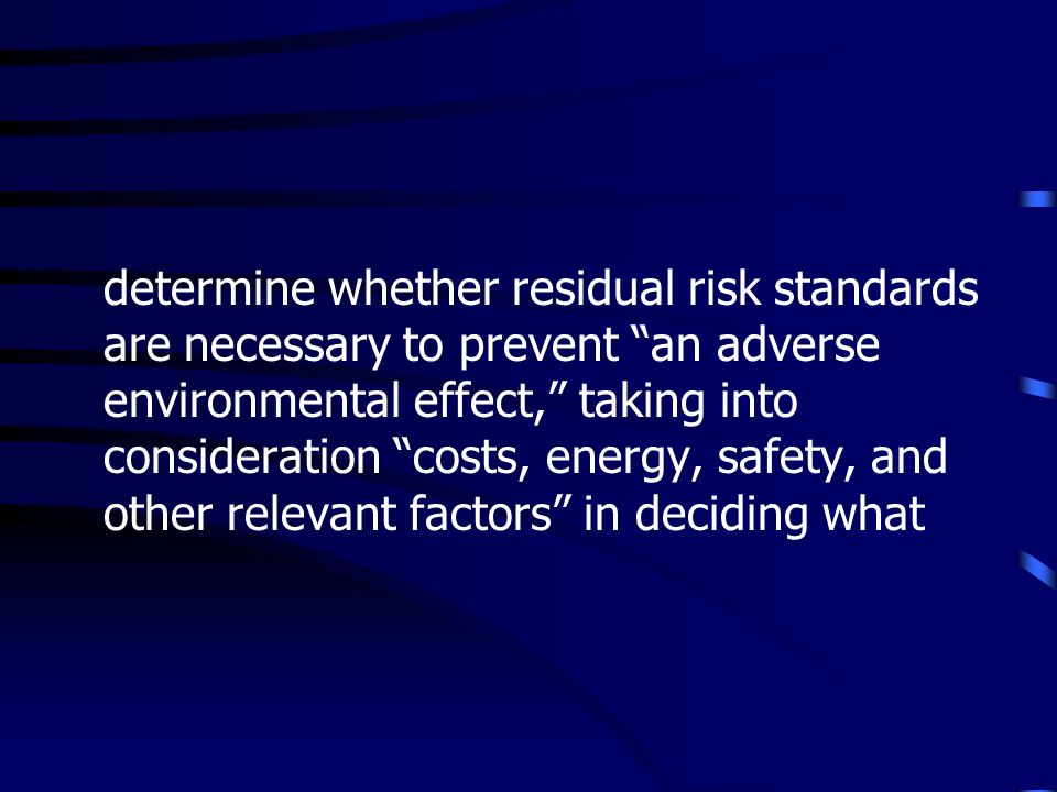 determine whether residual risk standards are necessary to prevent an adverse environmental effect, taking into consideration costs, energy, safety, and other relevant factors in deciding what