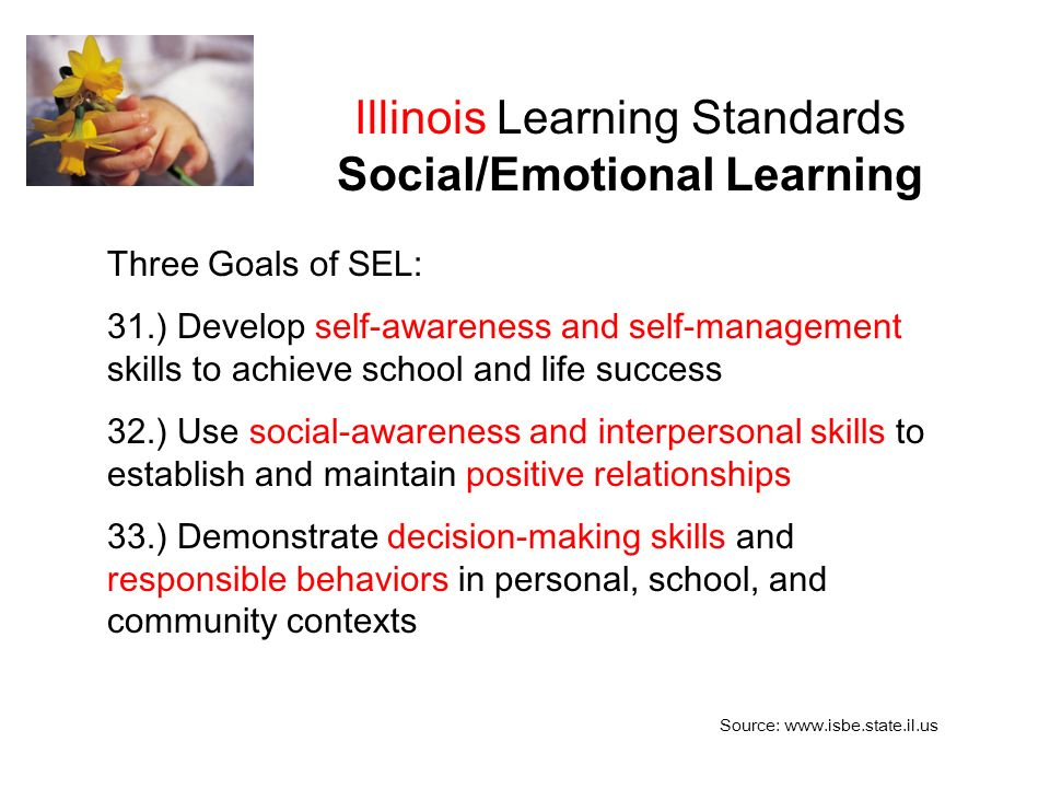 Illinois Learning Standards Social/Emotional Learning Three Goals of SEL: 31.) Develop self-awareness and self-management skills to achieve school and life success 32.) Use social-awareness and interpersonal skills to establish and maintain positive relationships 33.) Demonstrate decision-making skills and responsible behaviors in personal, school, and community contexts Source: