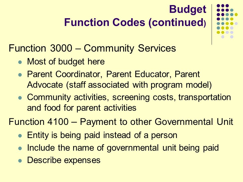 Budget Function Codes (continued ) Function 3000 – Community Services Most of budget here Parent Coordinator, Parent Educator, Parent Advocate (staff associated with program model) Community activities, screening costs, transportation and food for parent activities Function 4100 – Payment to other Governmental Unit Entity is being paid instead of a person Include the name of governmental unit being paid Describe expenses