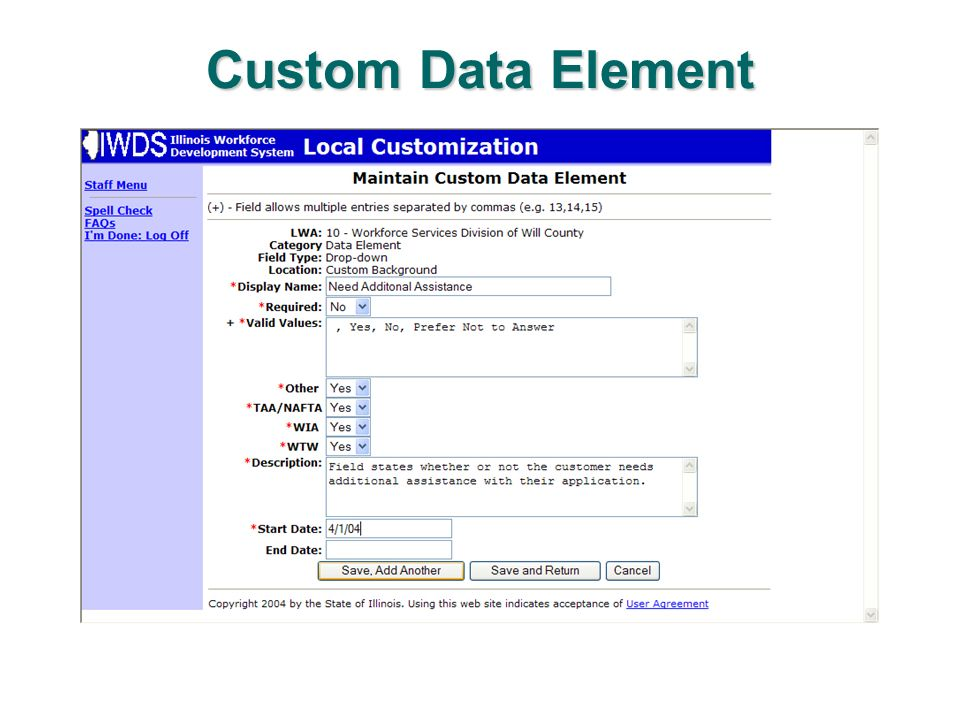 Custom Data Element