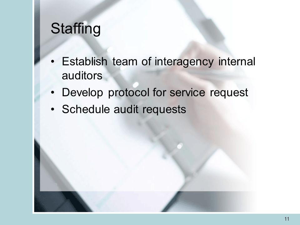 11 Staffing Establish team of interagency internal auditors Develop protocol for service request Schedule audit requests
