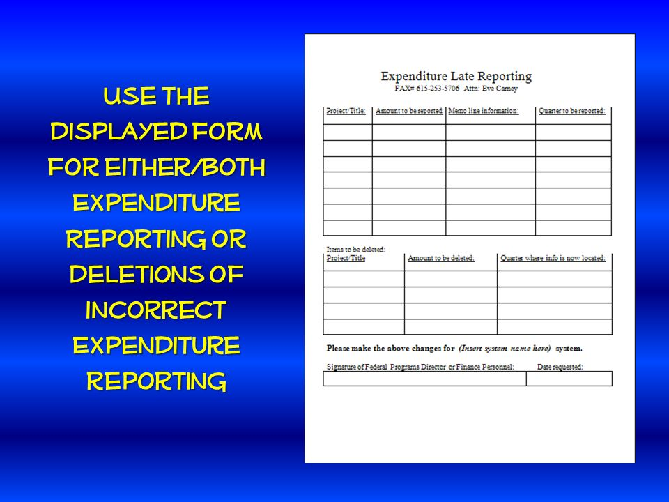 Use the displayed form for either/both Expenditure Reporting or deletions of incorrect Expenditure reporting
