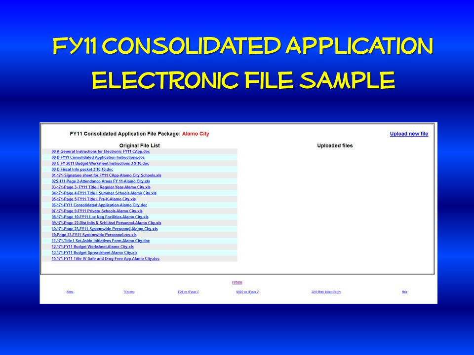 FY11 Consolidated Application electronic file sample