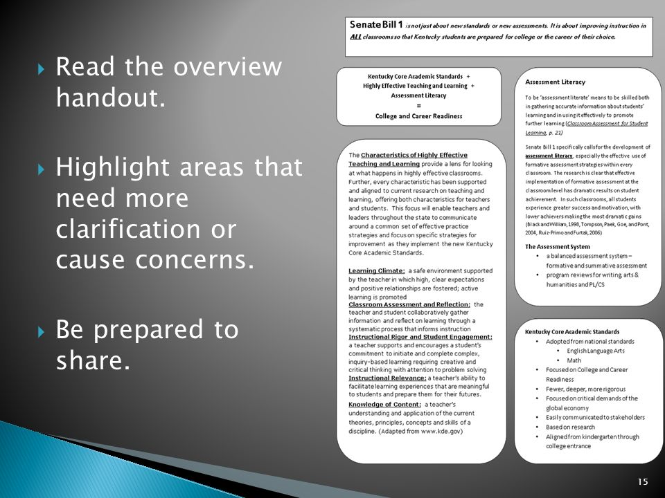 Read the overview handout. Highlight areas that need more clarification or cause concerns.