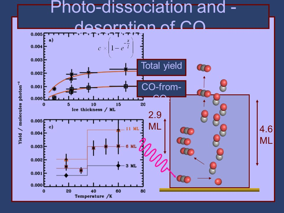 Photo-dissociation and - desorption of CO 2 4.6 ML 2.9 ML Total yield CO-from- CO 2